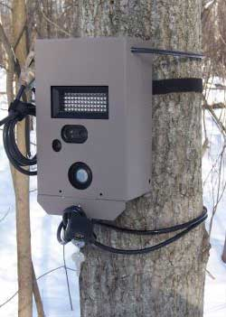 http://www.deertrackingcameras.com/images/pics/moultrie-lock.jpg